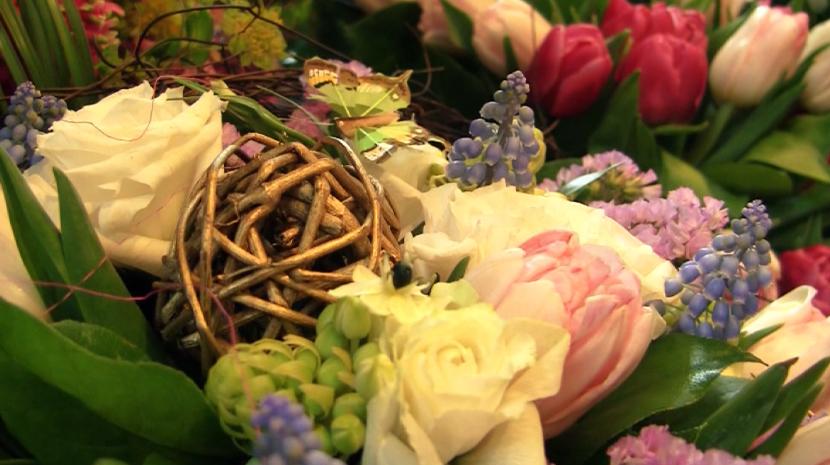 Www aif ru доставка цветов купить однолетние цветы в раменском районе