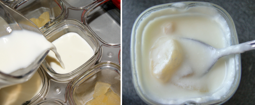 Почему йогурт получился кислым в йогуртнице