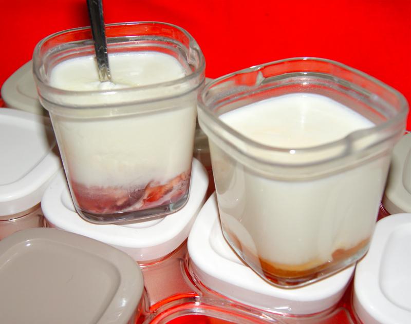 йогуртница рецепты приготовления тефаль