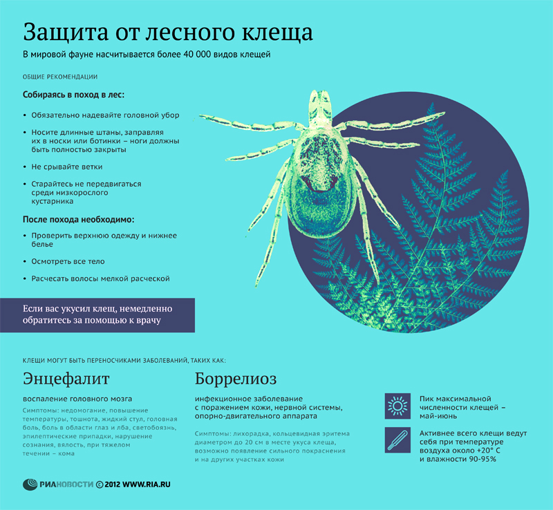 защита от паразитов