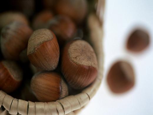 Как сушить лесной орех в домашних условиях - Биметалл Плюс